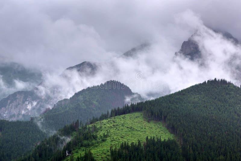 Download Tatra Mountains In Zakopane At Cloudy Day Stock Image - Image: 32385215