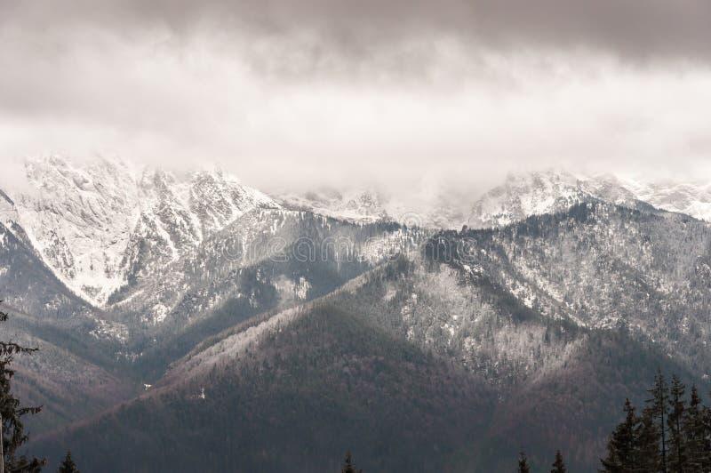 Download Tatra Mountains In Zakopane, Poland Stock Image - Image of summits, poland: 38929055