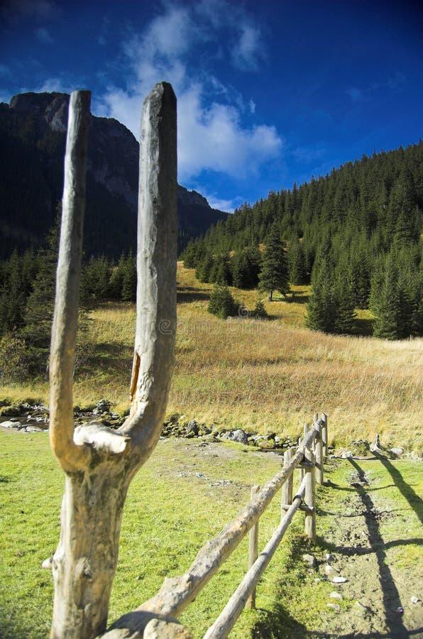 Tatra moutains stockbilder