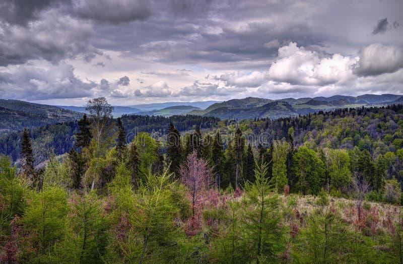 Tatra National Park, Slovakia. Cloudy midday royalty free stock photography