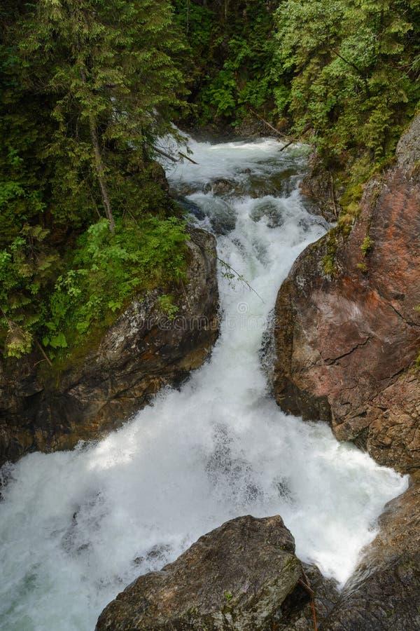 Download Tatra waterfall stock photo. Image of tree, woods, rocks - 46522524