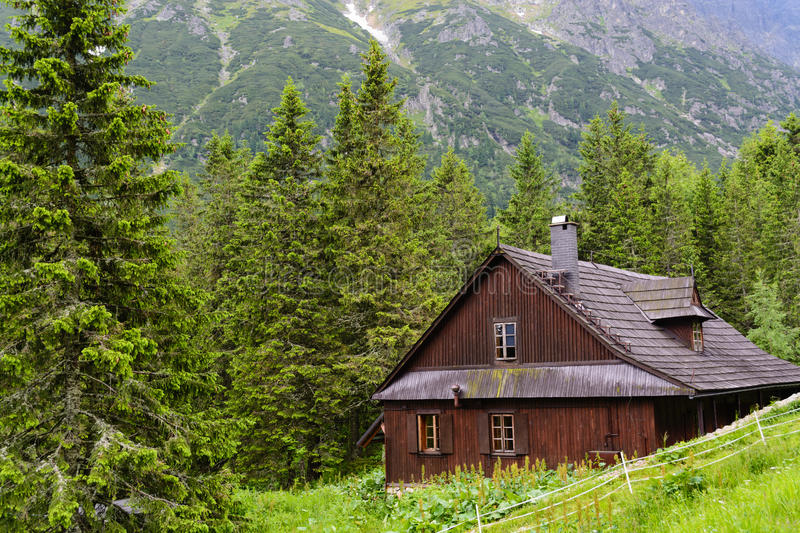 Download Tatra woods stock photo. Image of poland, cabin, tatra - 47779510