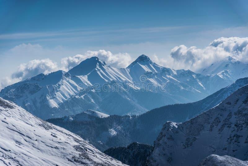 Tatras Belianske в зиме стоковые изображения
