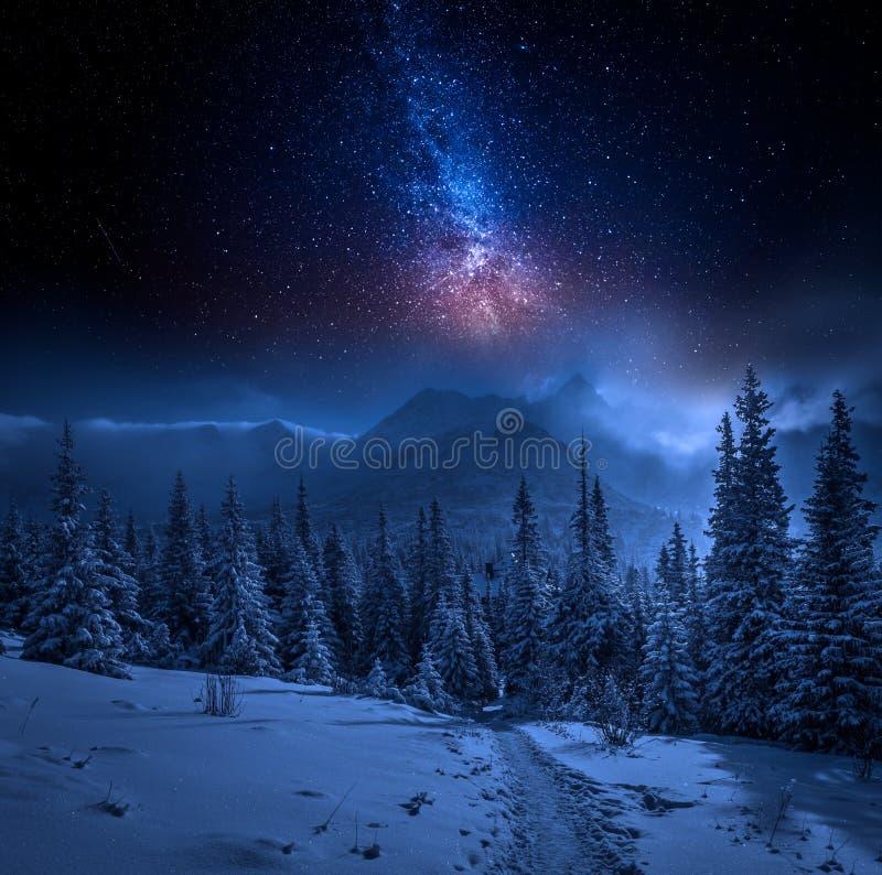 Tatras berg i vinter på natten och stjärnor, Polen royaltyfri foto