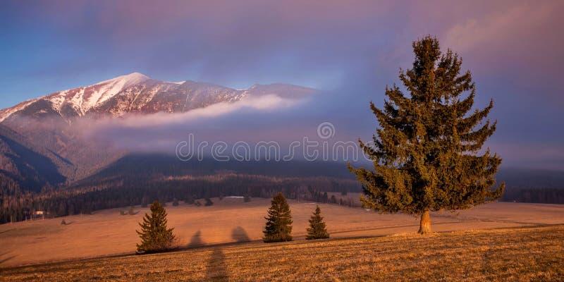 Tatras del oeste. fotografía de archivo libre de regalías