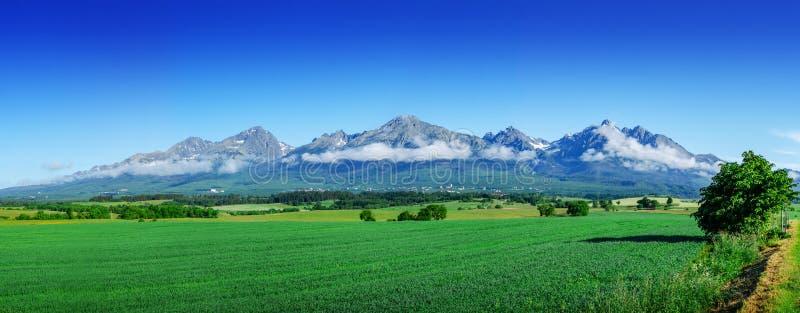 Tatras elevado, slovakia Paisagem cênico de uma cordilheira em um dia de verão fotos de stock