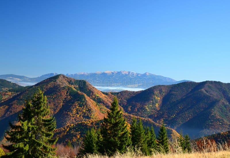 Tatras ocidental imagens de stock