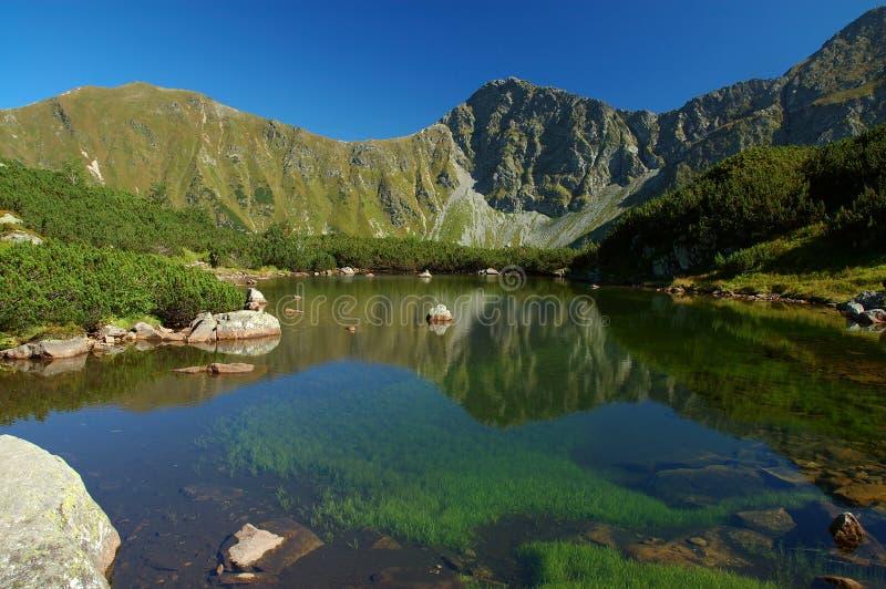 Tatry - lago de la montaña imagen de archivo