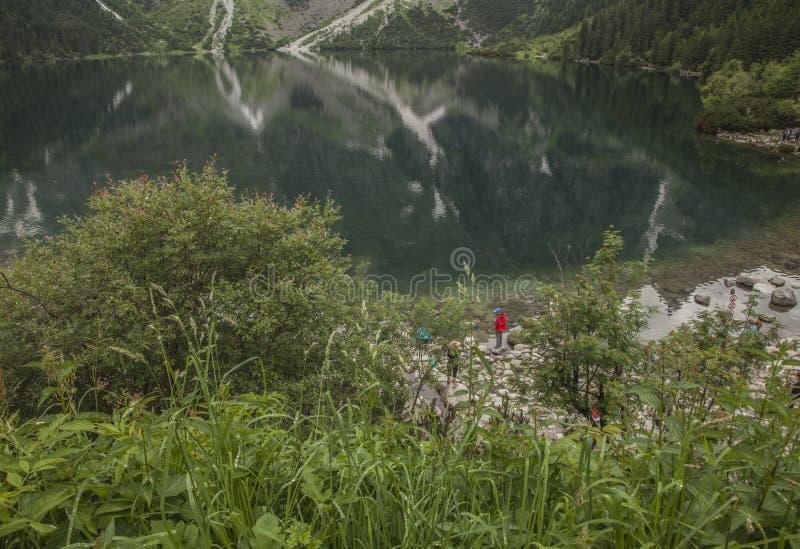 Tatry, Morskie Oko - горная цепь a, Польша, Европа; растительность и озеро стоковое изображение rf