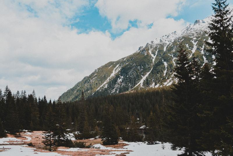 Tatry Mountains Zakopane Landscape. Pictures with snow took in tatry mountains. Beautiful landscape made in Morskie Oko stock photo
