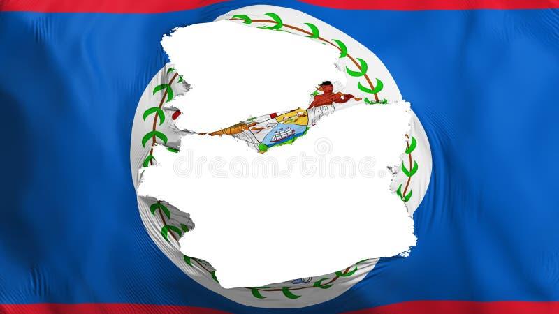 Tattered Belize flag. White background, 3d rendering vector illustration