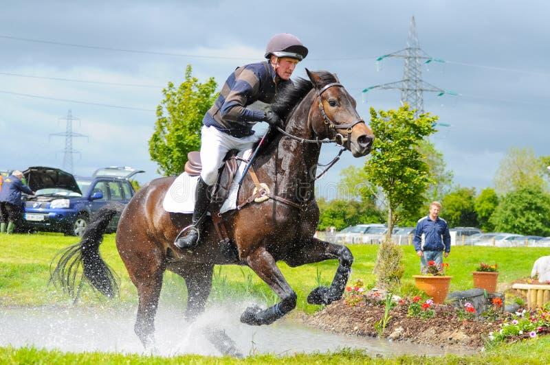 Tattersalls koński przedstawienie w Irlandia, koń galopping po tym jak przeszkoda w wodzie z męskim jeźdzem, dżokeja gnanie naprz obraz stock