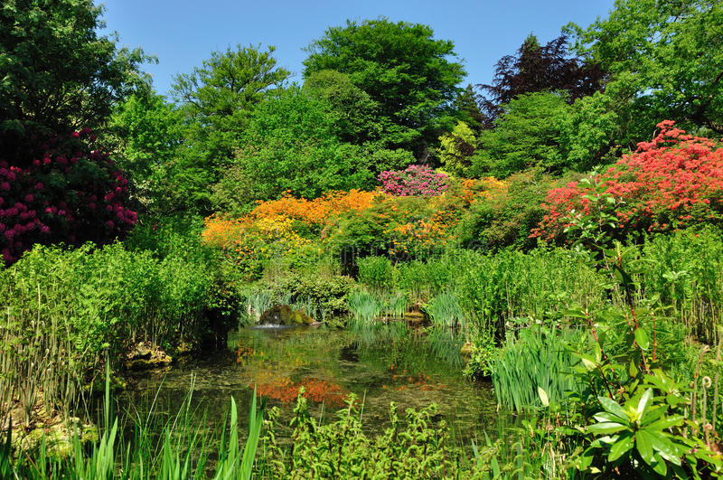 Tatton Park Gardens. One of the ponds in Tatton Park royalty free stock photography