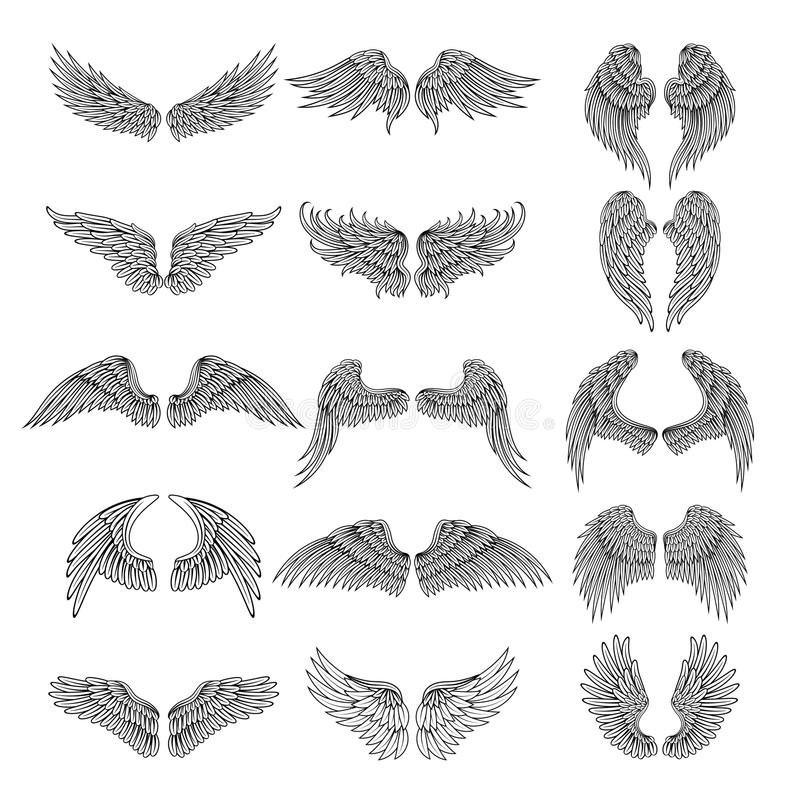 Tattoo design pictures of different stylized wings. Vector illustrations for logos design vector illustration
