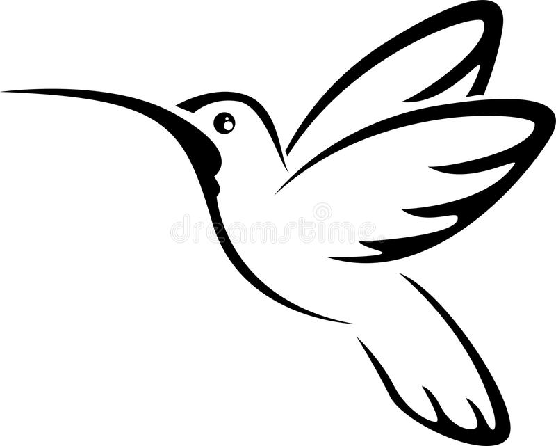 Tattoo hummingbird for you design vector illustration
