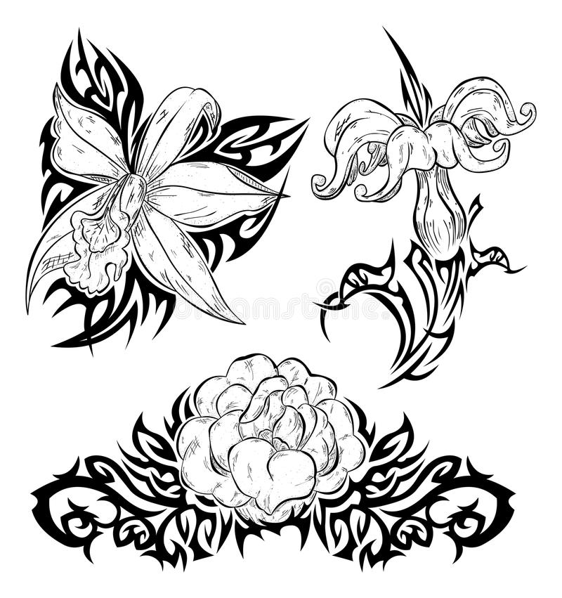 Free Tattoo With Flowers Royalty Free Stock Images - 12306929