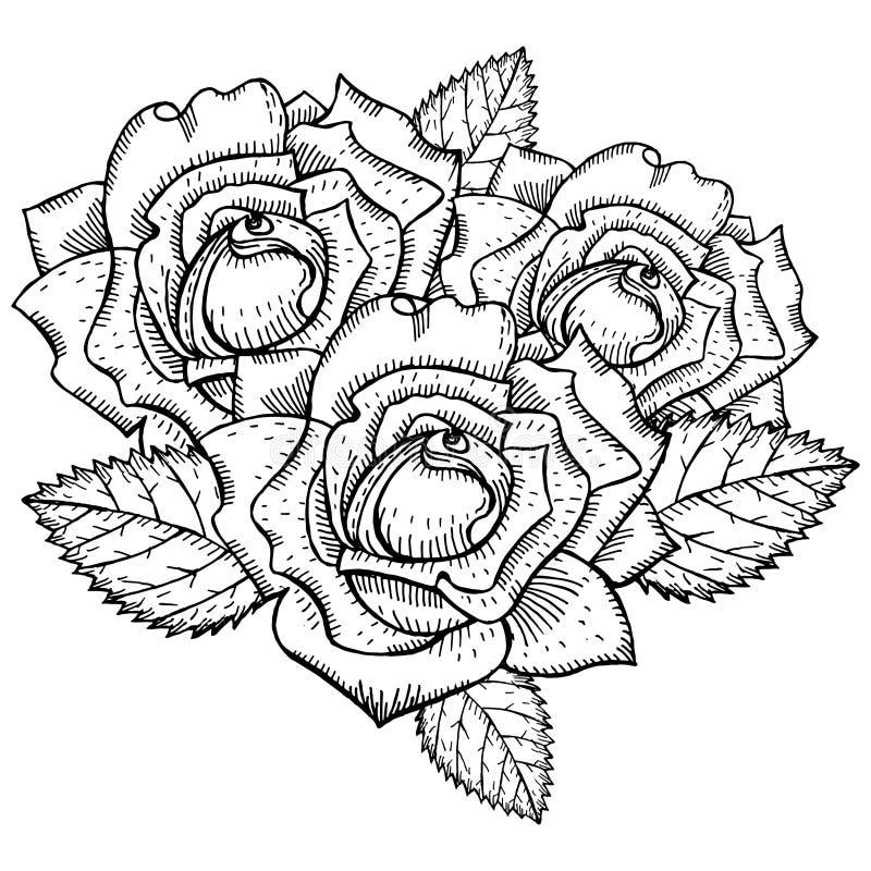 Tatuagem preto e branco do desenho das rosas fotos de stock