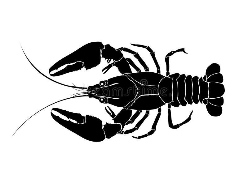 Tatuaje de los cangrejos stock de ilustración
