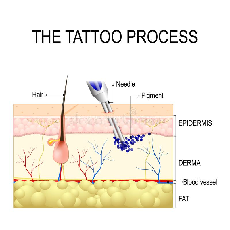 Tatueringprocess stock illustrationer