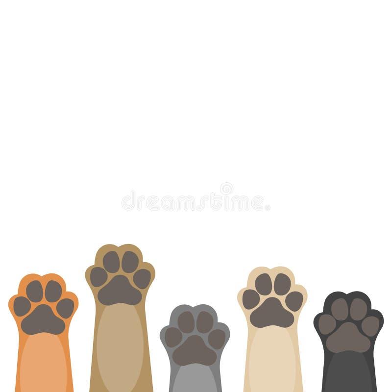 Tatzen up Haustiere auf weißem Hintergrund vektor abbildung