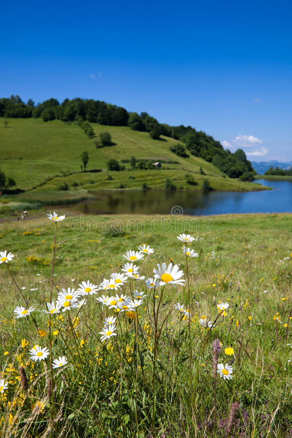 Download Tau Mare Lake stock image. Image of scenic, mare, pond - 15221997