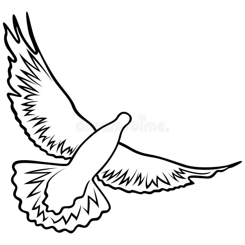 Taube im Flug stock abbildung