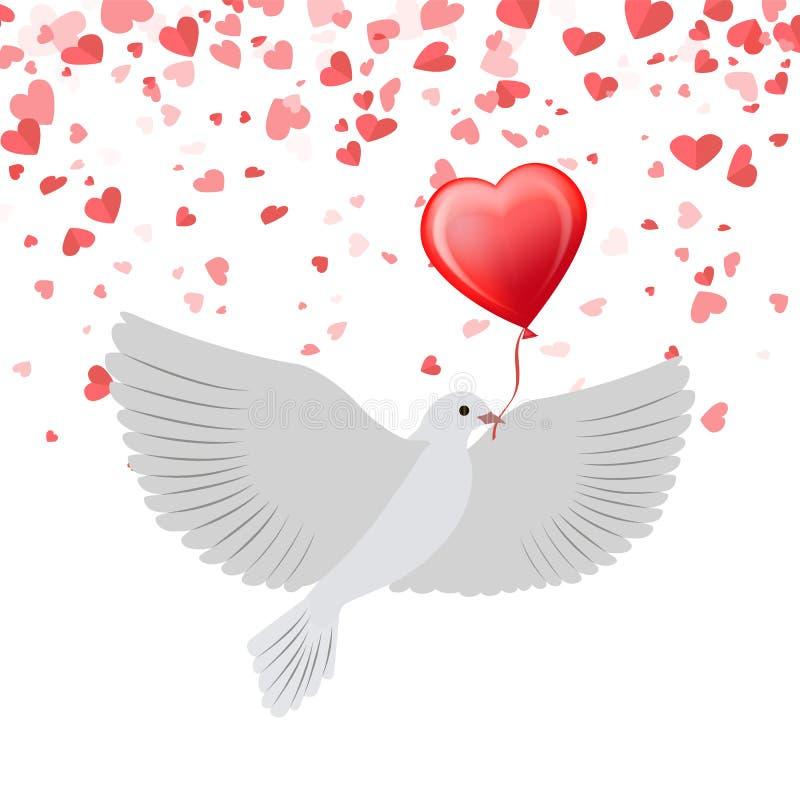 Taube mit Ballon im Schnabel lokalisiert auf Hintergrund lizenzfreie abbildung