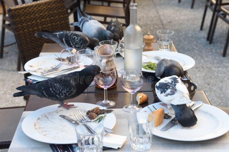 Tauben, die an einem Restaurant essen stockfotos