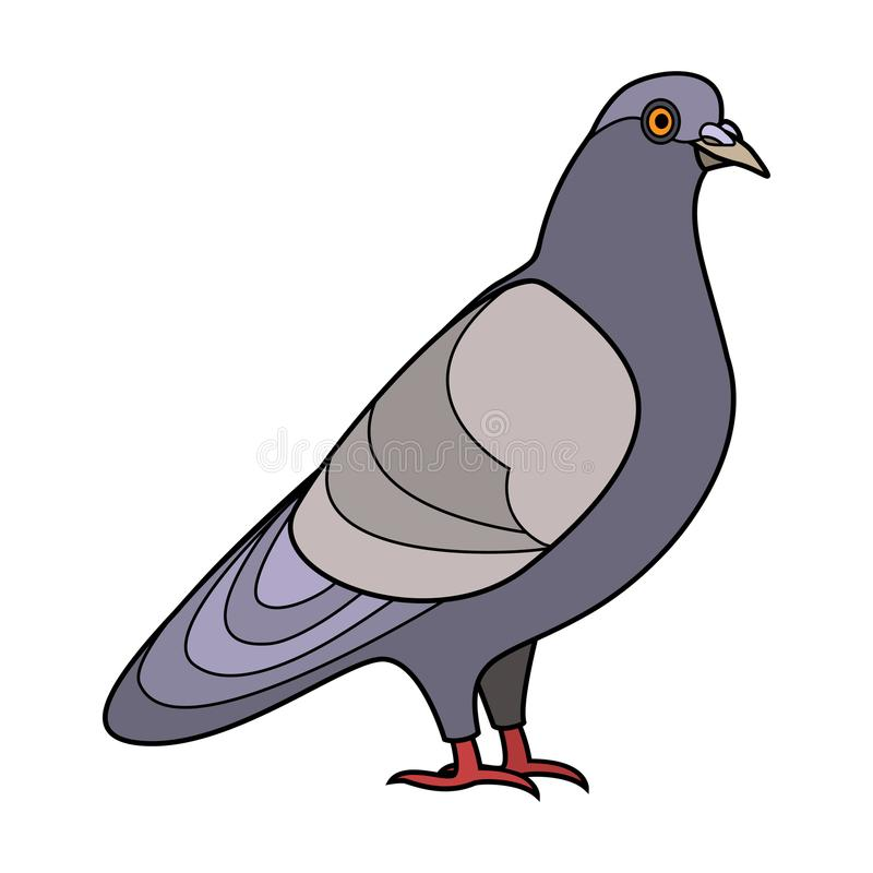 Taubenkontur vektor abbildung