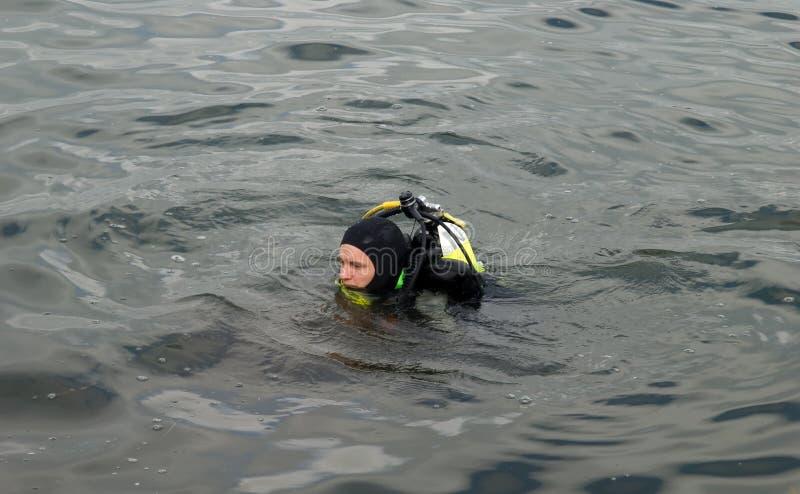 Taucher auf See stockfotografie