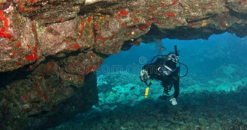 Taucher, der Lava Arch in Hawaii erforscht lizenzfreie stockfotos