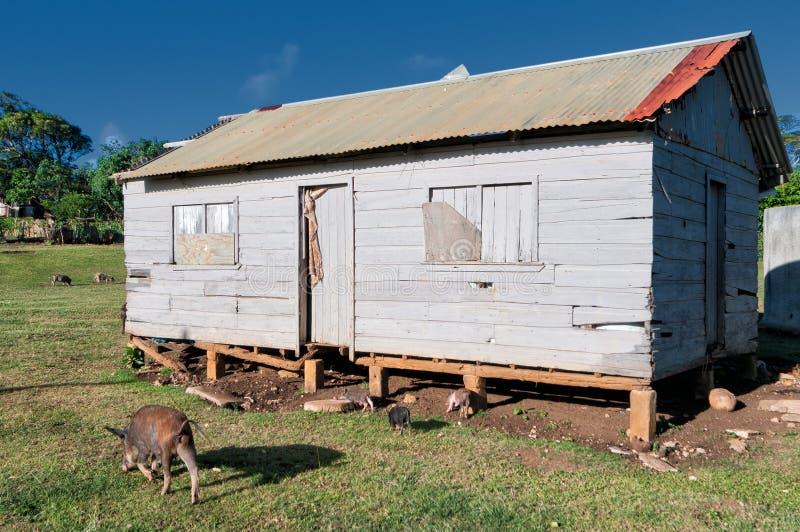 Taudis, hutte, cabane au Tonga, Polynésie image libre de droits