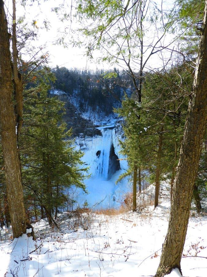 Taughannock faller klyftasikten i vinter arkivfoton