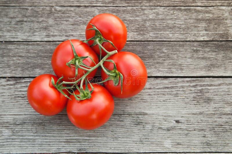 Taunasse rote Tomaten auf dem rustikalen hölzernen Brett stockfotografie