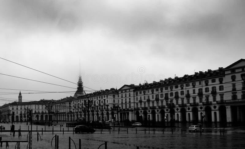 Taupe Antonelliana dans le brouillard image libre de droits