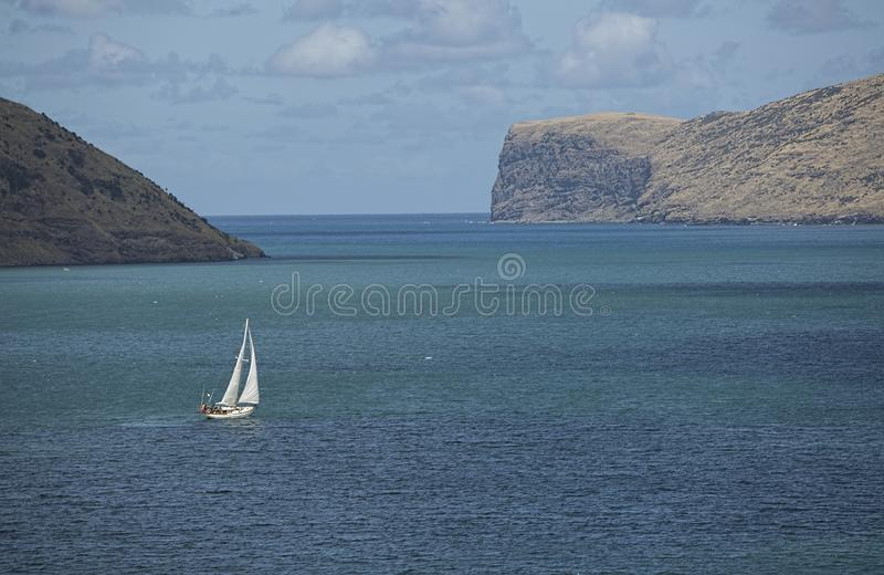 Tauranga Harbour, Northern Island of New Zealand royalty free stock photography