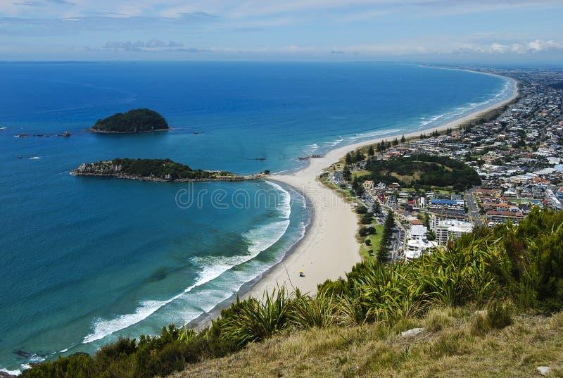 Tauranga-Strand im Sommer lizenzfreies stockbild