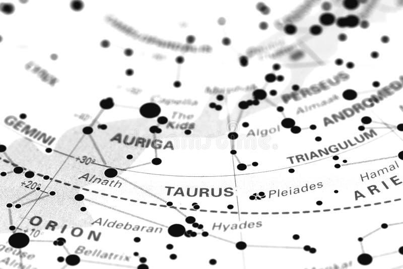 Taureau sur la carte d'étoile photographie stock libre de droits