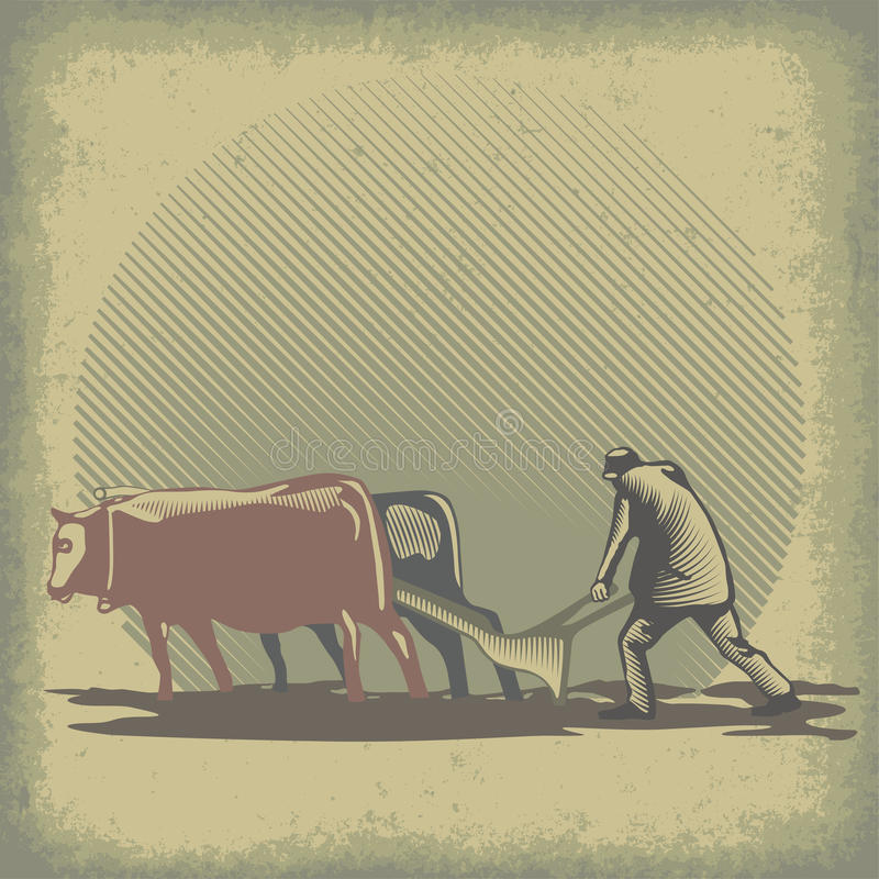 Taureaux et herse illustration stock