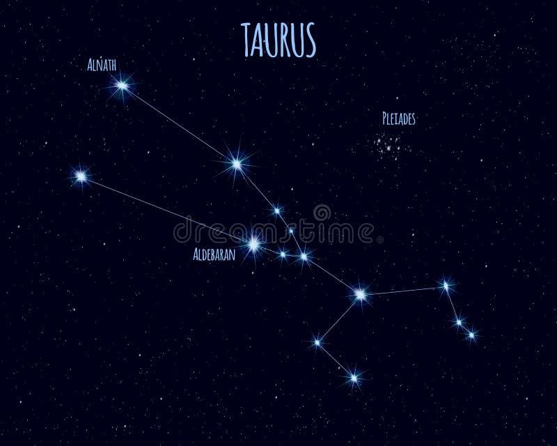 Tauro ( El Bull) constelación, ejemplo del vector con los nombres de estrellas básicas ilustración del vector