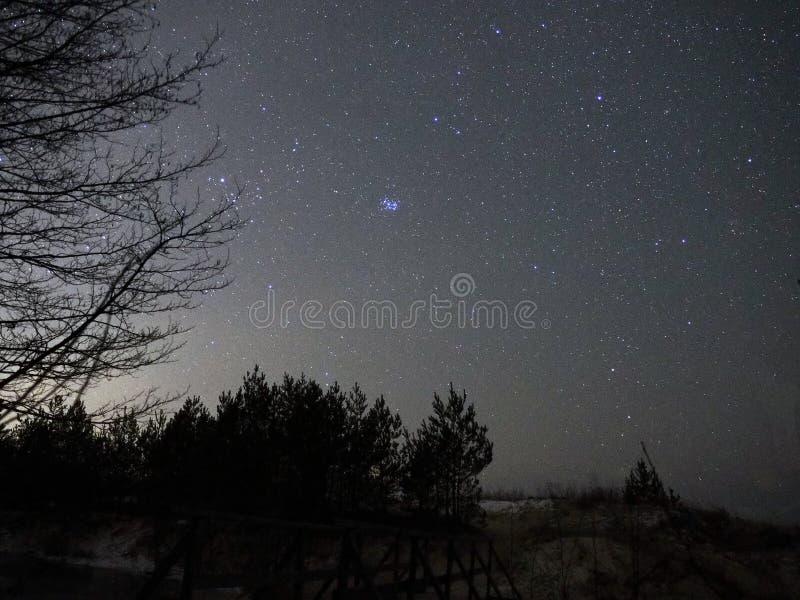 Taurus αστεριών νυχτερινού ουρανού παρατήρηση Pleiades αστερισμού στοκ εικόνες