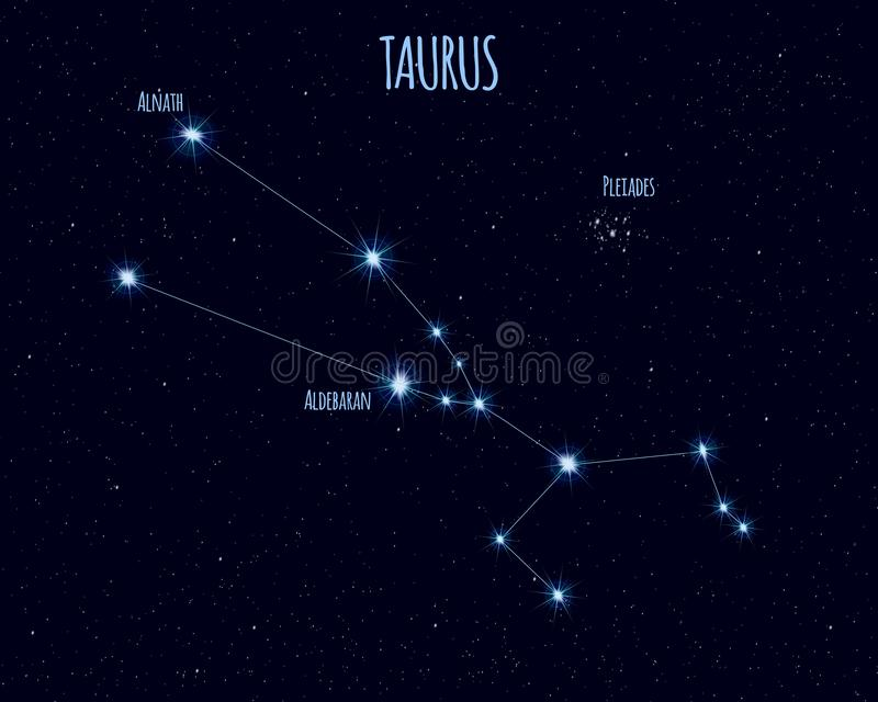 Taurus constellation, vector illustration with the names of basic stars vector illustration