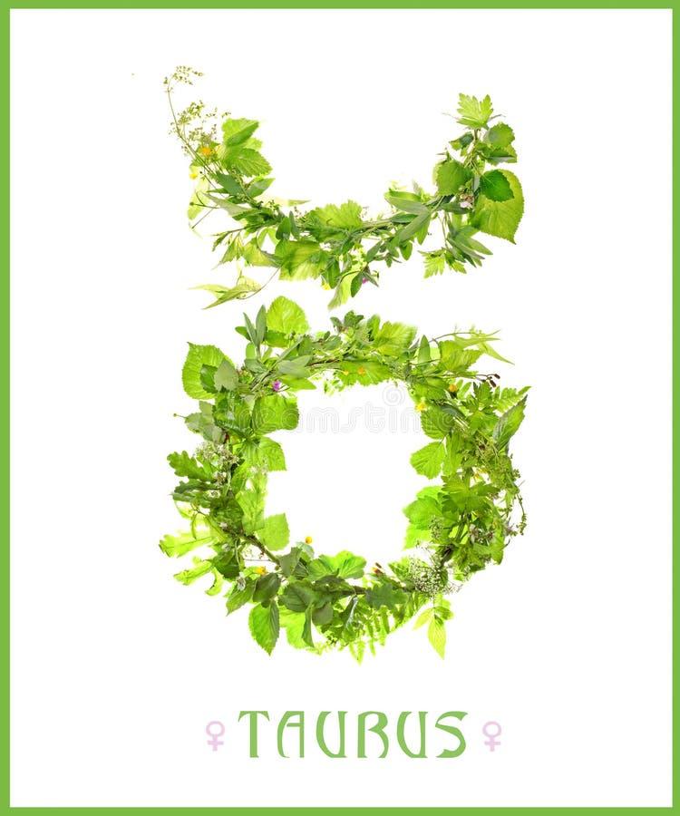 Taurus della costellazione fotografie stock