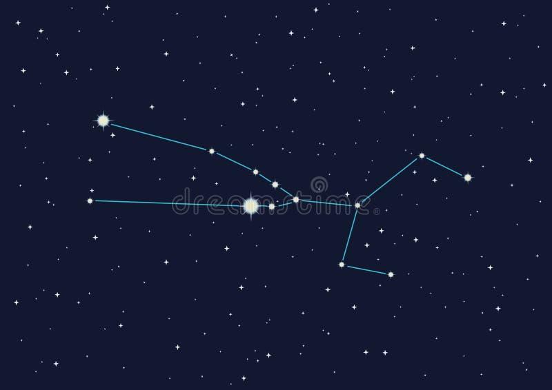 taurus gwiazdozbiorze ilustracji