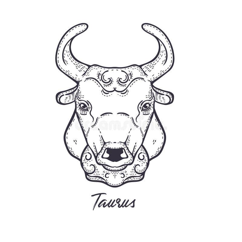 Taurus Zodiac konstellation Symbolet av det astrologiska horoskopet vektor illustrationer