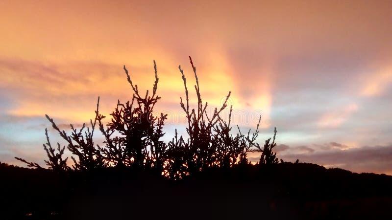 tausend Farben im Sonnenuntergang stockfoto