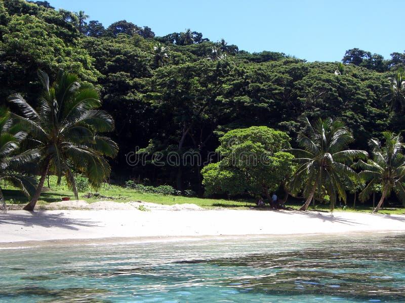 Taveuni wyspa zdjęcia royalty free