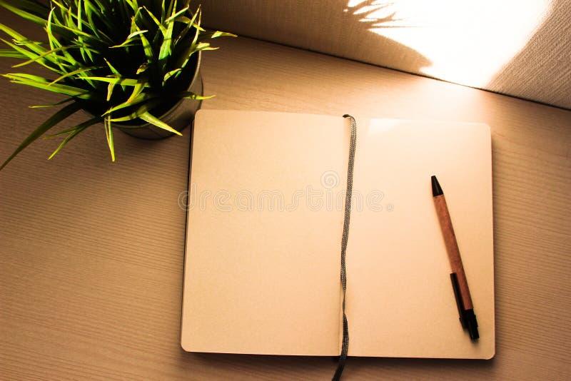 Tavola dell'ufficio di vista superiore, tavola con un taccuino aperto, un album, vetri, una pianta verde Colori saturati luminosi fotografia stock libera da diritti