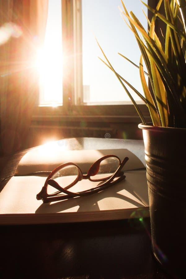 Tavola dell'ufficio di vista superiore, tavola con un taccuino aperto, un album, vetri, una pianta verde Colori saturati luminosi immagini stock