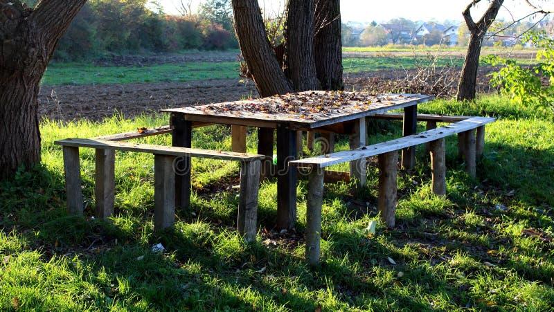 Tavola di legno con quattro banchi in erba non tagliata immagine stock